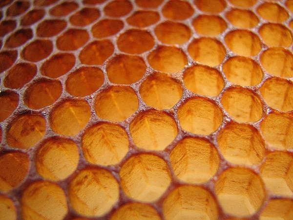 Android 3.0 Honeycomb, el próximo Android vuelve a citarse en 3.0 y con nombre Honeycomb