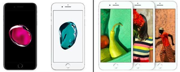 646874c2acc Diferencias y parecidos entre el iPhone 7 Plus y el iPhone 8 Plus