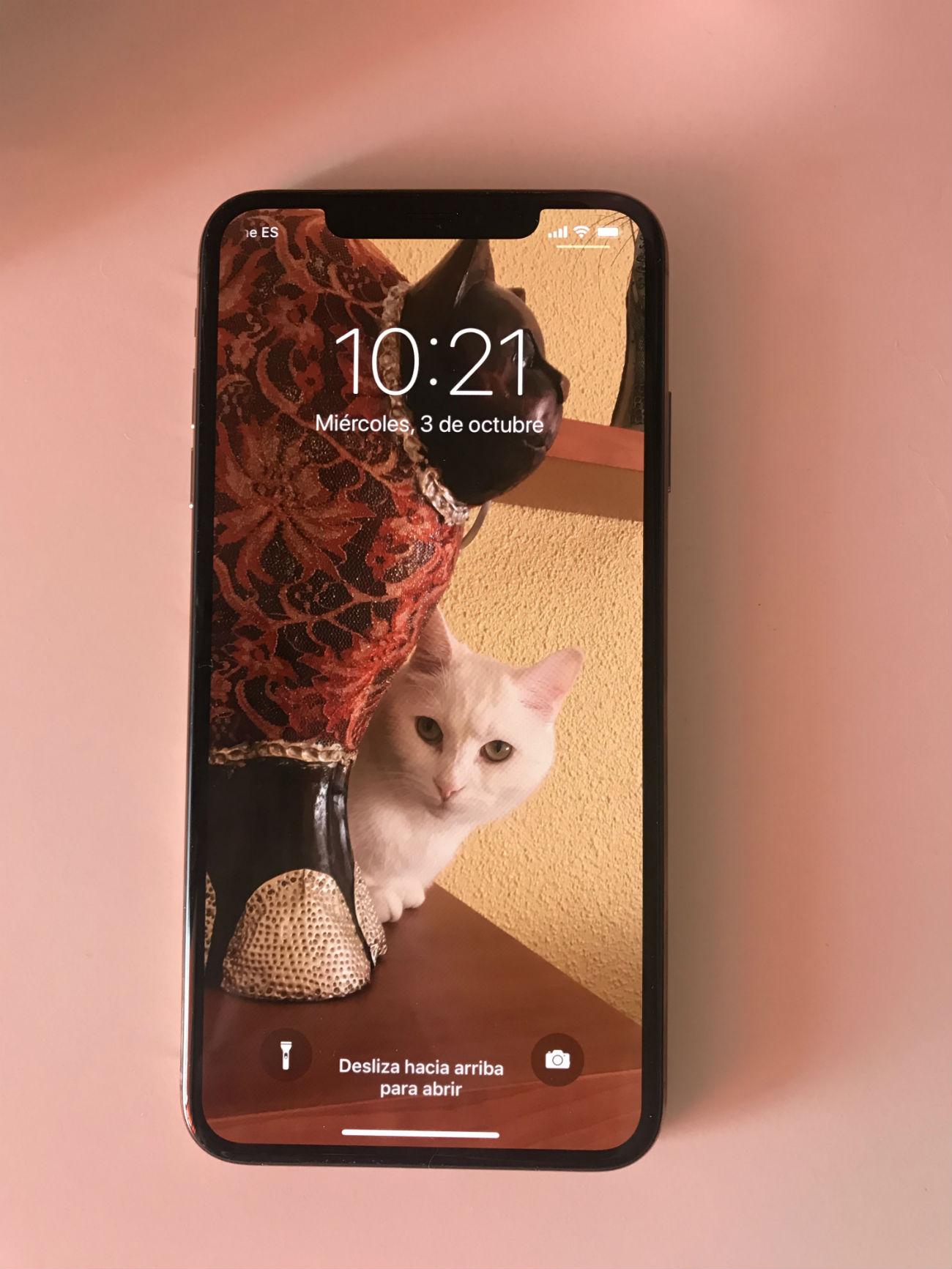 iPhone Xs Max diseño