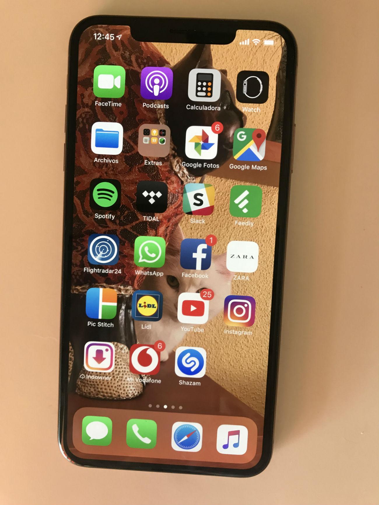 iPhone Xs Max conexiones